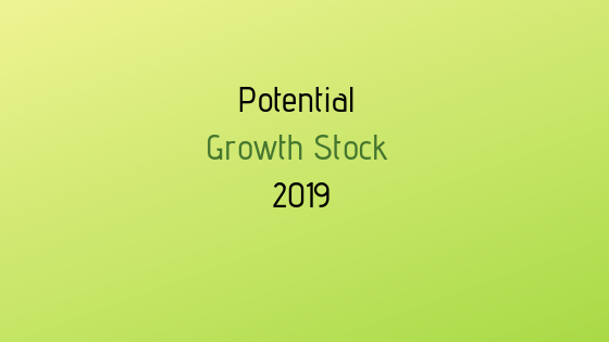 growth stocks 2019